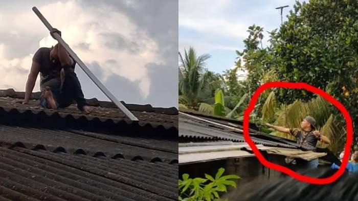 Maling Apes Terjebak di Atap Selama 6 Jam, Niat Bobol Rumah Muazin Malah Tak Mau Turun Ketakutan