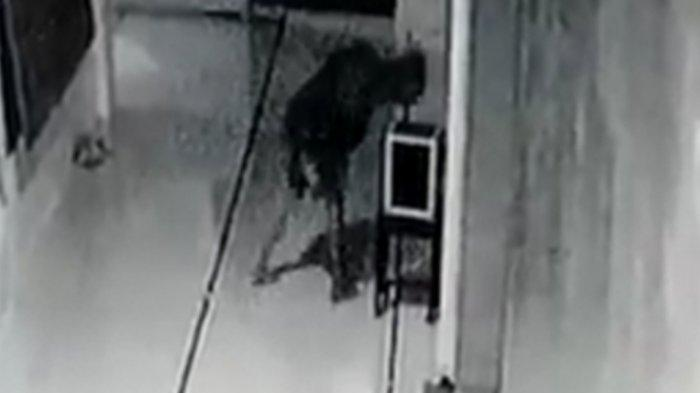 Penampakan Maling Kotak Amal yang Terekam CCTV Masjid As Silmi Magetan