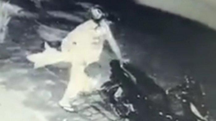 Maling Terekam CCTV MencuriTanaman Hias di Jalan Sudanco Supriadi, Kota Malang