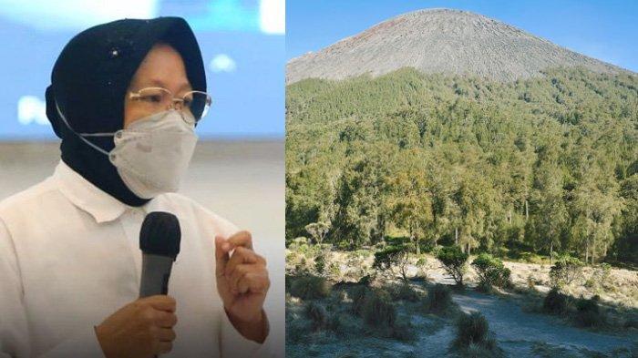 Info Pendakian Gunung Semeru: Bu Risma Antisipasi Bencana Erupsi dan Tsunami Pantai Selatan Jawa