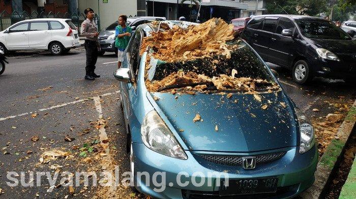 Mobil Honda Jazz Remuk Tertimpa Ranting Pohon di Alun-alun Kota Malang
