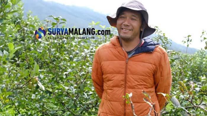 Kabar Baik untuk Petani Apel Batu, Peneliti Ini Temukan Formula untuk Obat Mata Ayam