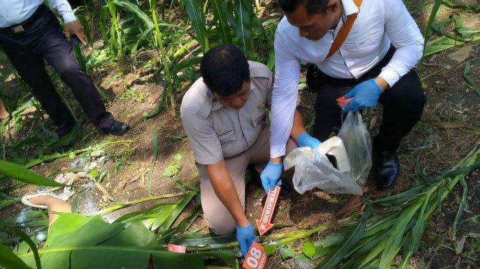 7 Fakta Penemuan Mayat Wanita Tanpa Busana di Kebun Jagung Ngawi, Pelaku Masih Berusia 19 Tahun