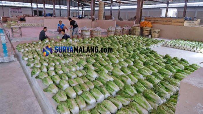 UPT Pasar Sayur Kota Batu Klaim Kesejahteraan Pedagang Meningkat Hingga 10 Persen