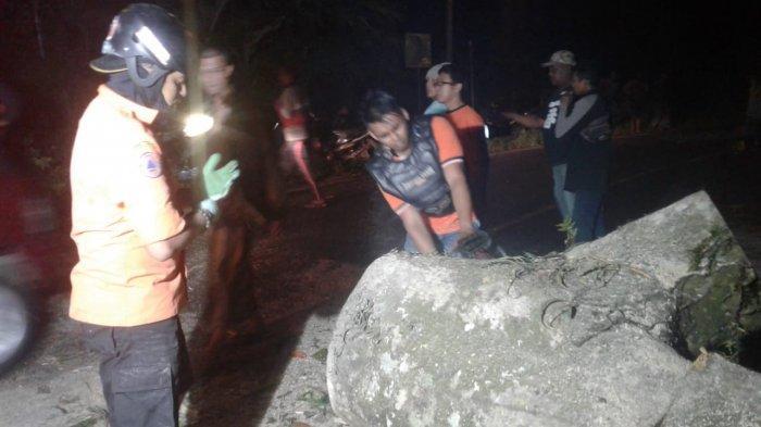 Jalur Gunungn Gumitir Jember-Banyuwangi Rawan Pohon Tumbang dan Tanah Longsor, Pengendara Hati-Hati
