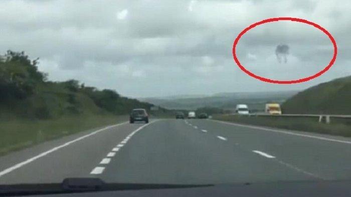 Terlihat Benda Aneh di Angkasa yang Bikin Heboh, UFO? Vidoenya Viral, Netizen Sampai Bilang Begini