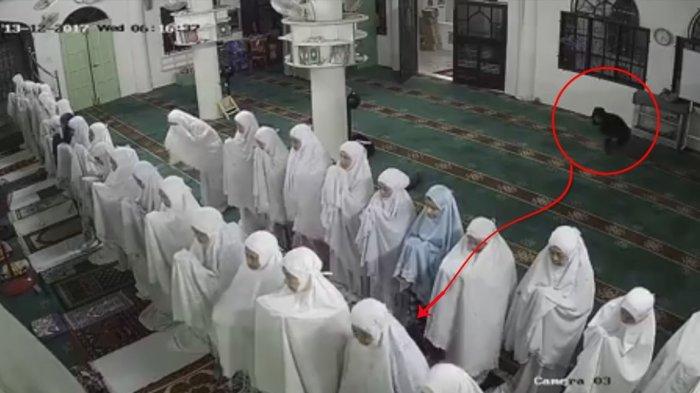 VIDEO - Detik-detik 'Iblis' Tertangkap CCTV di Masjid saat Subuh, Lihat yang Terjadi pada Jamaah