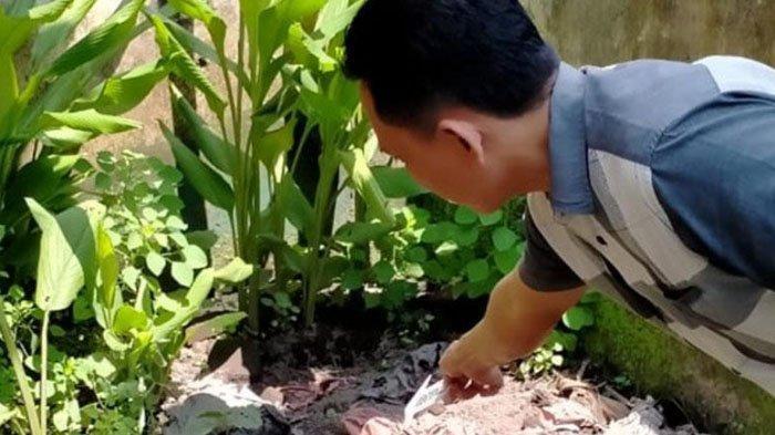Penemuan Makam Pria 80 Tahun Gegerkan Warga Jombang, Bermula Penampakan Siku Manusia di Atas Tanah