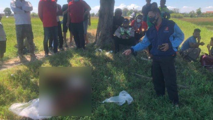 Pria Tanpa Identitas Ditemukan Tewas di Pinggir Tambak Buduran Sidoarjo