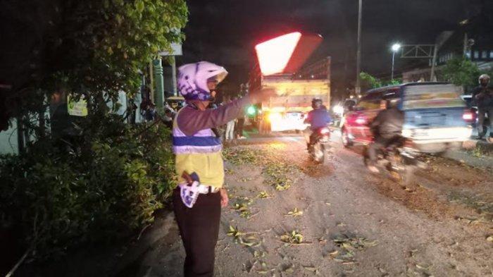 Pengendara Motor Tewas Tertimpa Pohon Tumbang di Taman Sidoarjo