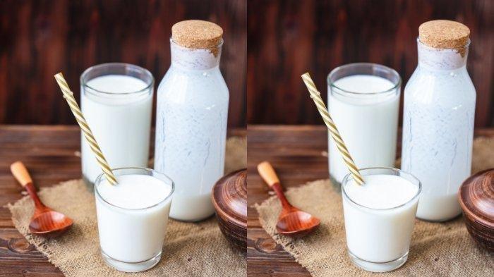 Perhatikan 4 Hal Ini Jika Konsumsi Susu Beruang, Cek Efek Samping dan Jangan Minum Berlebihan