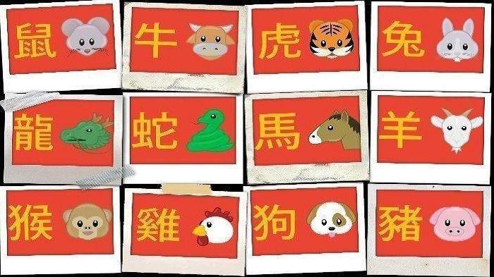 Peruntungan Shio 16 Januari 2021, Shio Kerbau Jangan Keras Kepala Jelang Imlek 2021