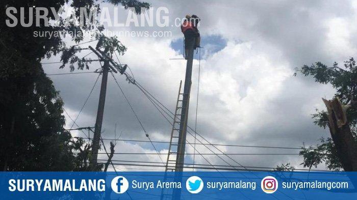 Angin Kencang Bikin Roboh 6 Tiang Listrik di Kota Blitar, Aliran Listrik ke Rumah Warga Masih Padam