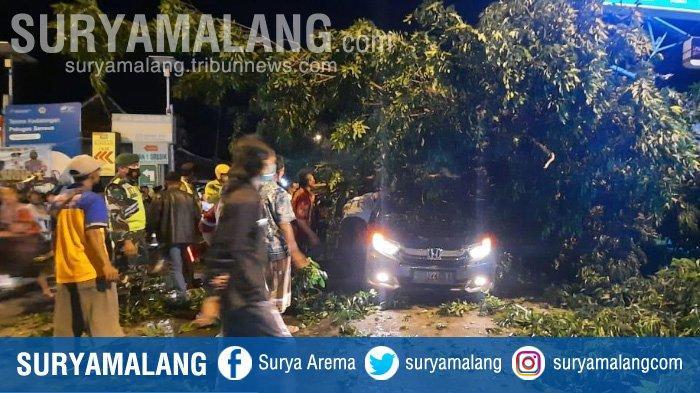 Diseruduk Truk Kontainer, Pohon Tumbang Menimpa Mobil Honda Brio di Gresik