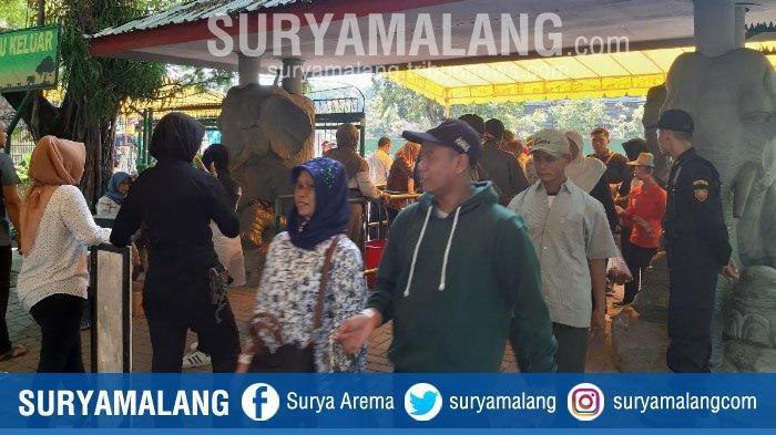 Kebun Binatang Surabaya (KBS) Buka 3 Pintu Masuk Selama Libur Lebaran