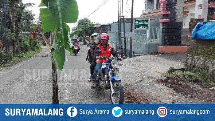 Warga Junrejo Tanam Pohon Pisang di Jalan Berlubang, Lihat Reaksi Pemkot Batu