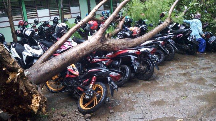 Angin Kencang Robohkan Pohon Di SMKN 1 Tuban, Sejumlah Motor Rusak Tertimpa