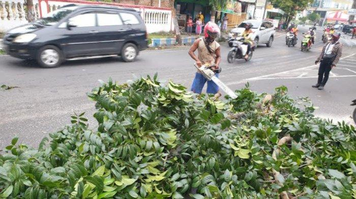 3 Pengendara Motor Berjatuhan Tertimpa Pohon Tumbang yang Roboh Seusai Ditabrak Truk di Mojokerto