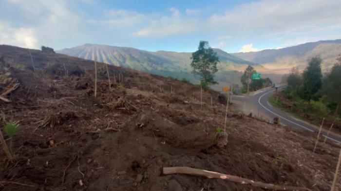 WALHI Jatim Nilai Pembangunan Jembatan Kaca Ancam Kelestarian Ekologi dan Adat di Kawasan TNBTS