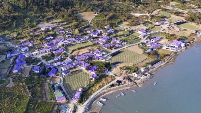 Fasilitas Wisata Pulau Banwol Atau Pulau Ungu di Korea Selatan, Ada Rumah dan Jembatan Warna Ungu