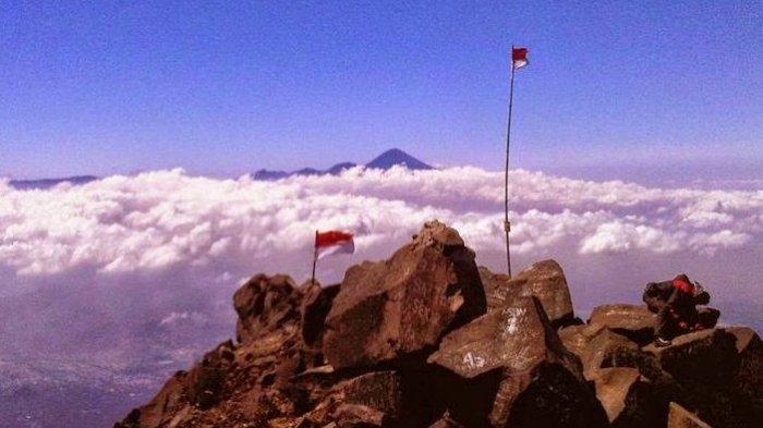 Berikut Adalah Identitas Pendaki Gunung Arjuno : Satu Pendaki Dilaporkan  Tewas - Surya Malang