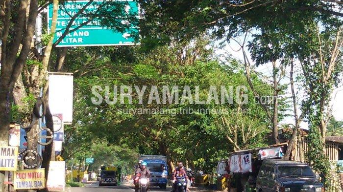 Lapor! Banyak Rambu Penunjuk Arah Tertutup Dahan Pohon di Kabupaten Malang