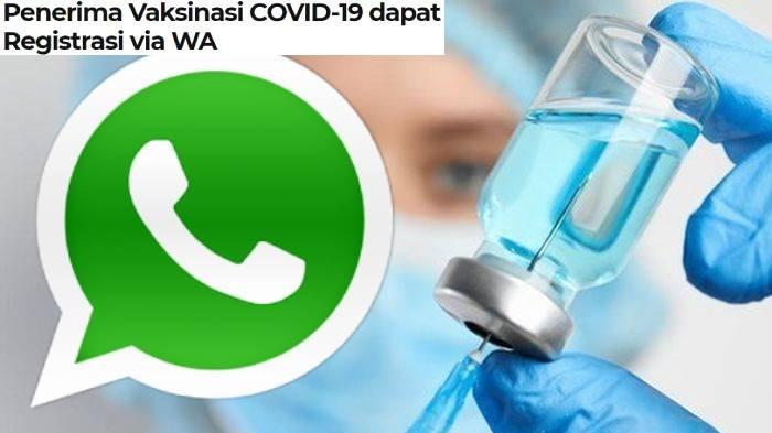 Nomor Whatsapp (WA) Untuk Registrasi Vaksinasi Covid-19, Cara Daftar & Konfirmasi Jika Belum Terdata