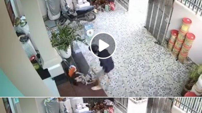 Rekaman CCTV Penculikan Anak di Teras Rumah Viral di Facebook, Dibius Lalu Dibawa Pakai Karung