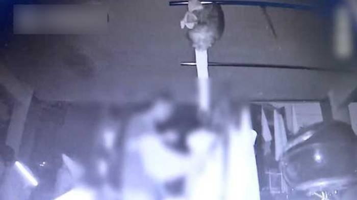 Wanita Pasang CCTV Curiga Pakaian Dalamnya Ada Bercak Kuning saat Dijemur, Syok Tahu Aksi Pria Ini