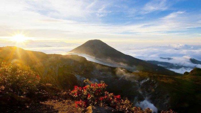 Jalur Pendakian Gunung Gede Pangrango Sudah Dibuka, Ini Syarat yang Wajib Dipenuhi Pendaki