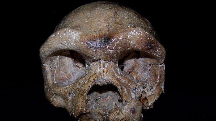 Tengkorak 260.000 Tahun dari China ini Sekelompok dengan Manusia Purba Jawa