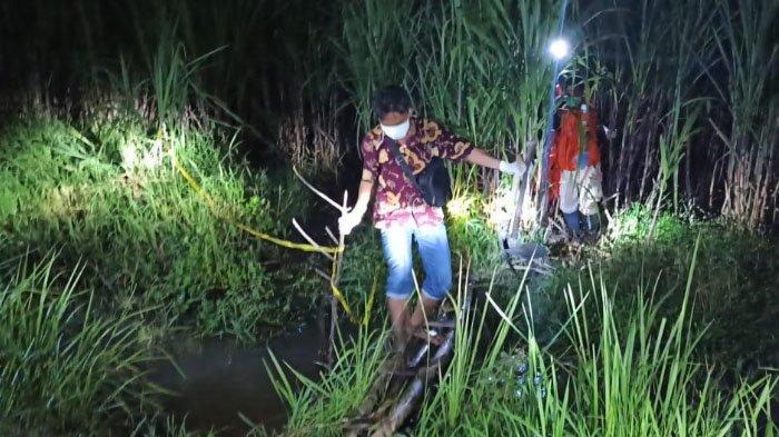 Geger Penemuan Tulang Belulang Manusia di Kebun Tebu Sidoarjo, Polisi Terima Laporan Orang Hilang