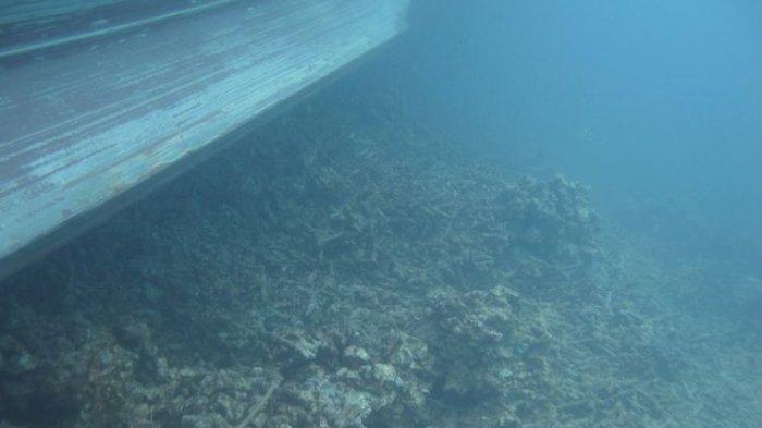 Kandas di Perairan Kepulauan Bangka Belitung, Kapal Belgia dan Bahama Harus Bayar Rp 35 Miliar