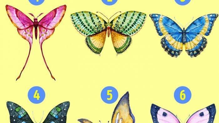Tes Kepribadian Psikologi - Kupu-kupu yang Kamu Pilih Mencerminkan Sifat Tersembunyimu