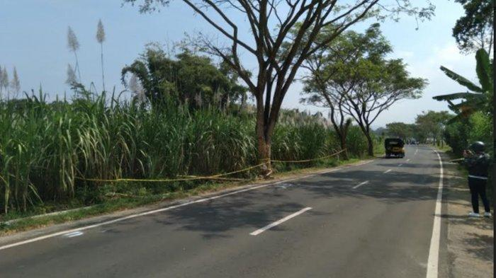 Napak Tilas TKP Laka Mobil Pikap Tabrak Pohon di Poncokusomo Malang, Warga Sebut Ada Bekas Pemakaman