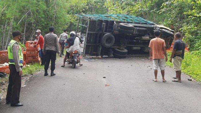Truk Terguling di Jalan Raya Sawoo-Tumpakpelem, Ponorogo, Ribuan Ayam Berhamburan di Jalanan