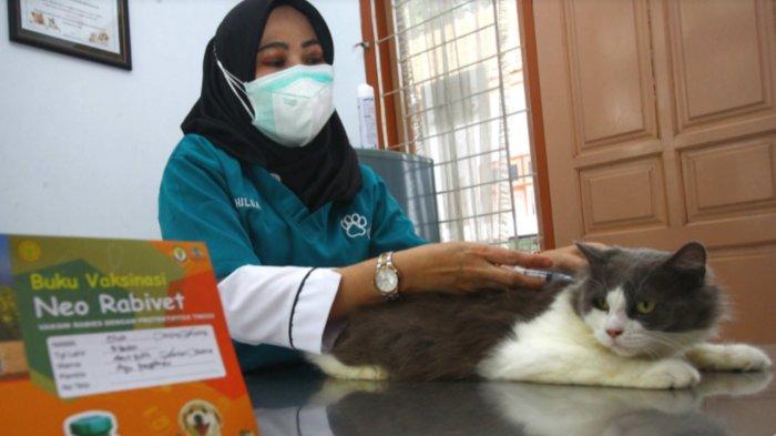 Vaksinasi Hewan Peliharaan untuk Pertahankan Status Kota Malang Bebas Rabies