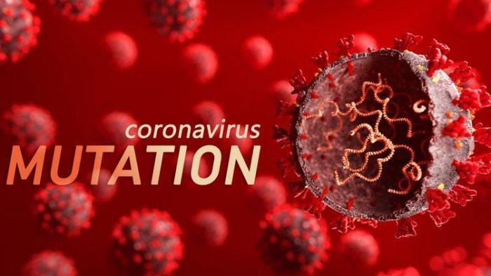 Varian Baru Virus Corona Ditemukan di Jawa Timur, Mutasi Berasal dari Afrika Selatan dan London