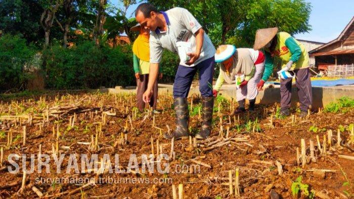 Kehidupan Miliarder Baru Seusai Dapat Uang Rp 17 Miliar dari Hasil Jual Tanah di Tuban