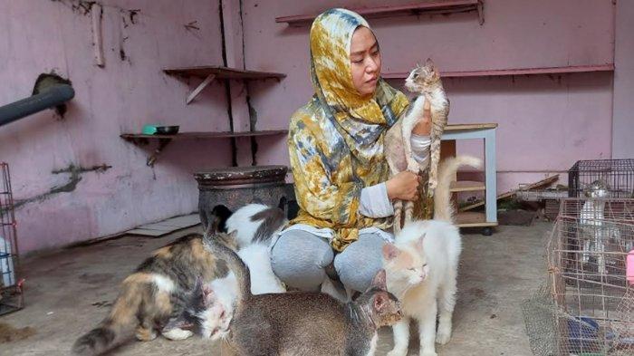 Tyas Widarsih, 'Mak Kucing' Perawat Kucing Terlantar di Lumajang