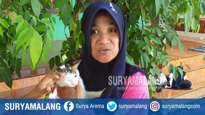 Kisah Viral Kucing Kampung di Mojokerto Selamatkan Satu Keluarga dari Teror Ular Kobra, Mencekam!