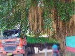 6-fakta-sopir-truk-trailer-tersesat-dan-berhenti-di-pohon-beringin-di-semarang-ada-cerita-mistis.jpg