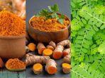 6-tanaman-herbal-untuk-tingkatkan-imun-cegah-infeksi-virus-corona-ada-temulawak-kunyit-meniran.jpg