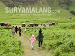 area-kawasan-wisata-tnbts-yang-berada-di-kecamatan-tumapang-kabupaten-malang.jpg