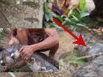 berita-penemuan-ular-di-pontianak_20180403_122235.jpg