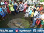 buaya-dusun-gedangan-desa-ngudirejo-kecamatan-diwek-jombang_20171224_200940.jpg