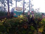 bus-masuk-hutan-jati_20170314_003727.jpg