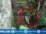 desa-tegowangi-kecamatan-plemahan-kabupaten-kediri_20180517_204133.jpg