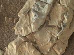 foto-benda-diduga-fosil-alien-di-mars_20180108_220254.jpg
