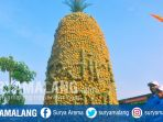 gunungan-nanas-di-area-bursa-buah-dan-agrobisnis-festival-kelud-2017-kediri_20170930_132019.jpg